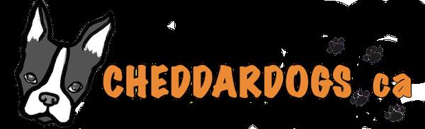 CheddarDogs